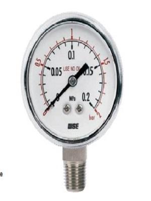 Đồng hồ áp suất WISE P113