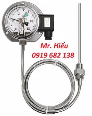 Đồng hồ nhiệt độ tiếp điểm điện WISE T500