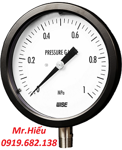 Đồng hồ áp suất WISE P330-P335