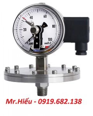 Đồng hồ áp suất tiếp điểm điện WISE P570